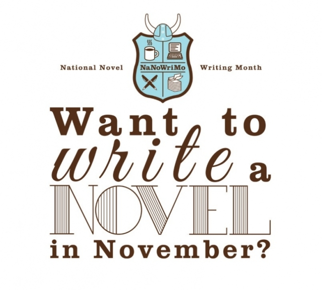 Want to Write a Novel in November?